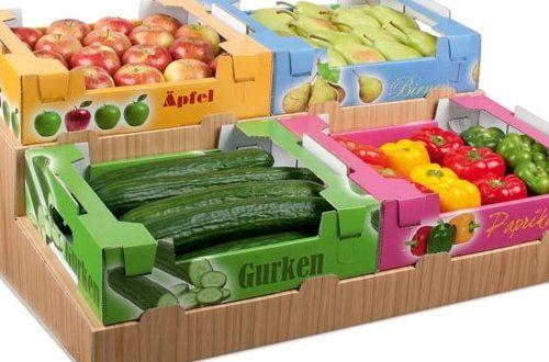 گزارش توجیهی طرح سورتینگ و بسته بندی انواع میوه تازه و خشک